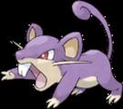 Rattata